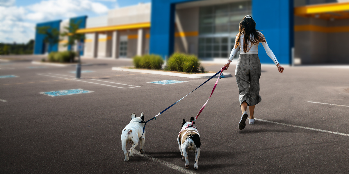 Recognizing and Understanding the Early Adopters of Walmart Veterinary Services